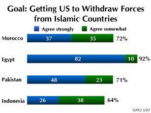 2007 World Public Opinion Poll